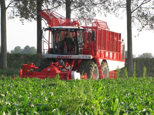new VERVAET 625 beet harvester
