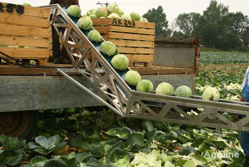 new SIMON dlya uborki kapusty conveyor