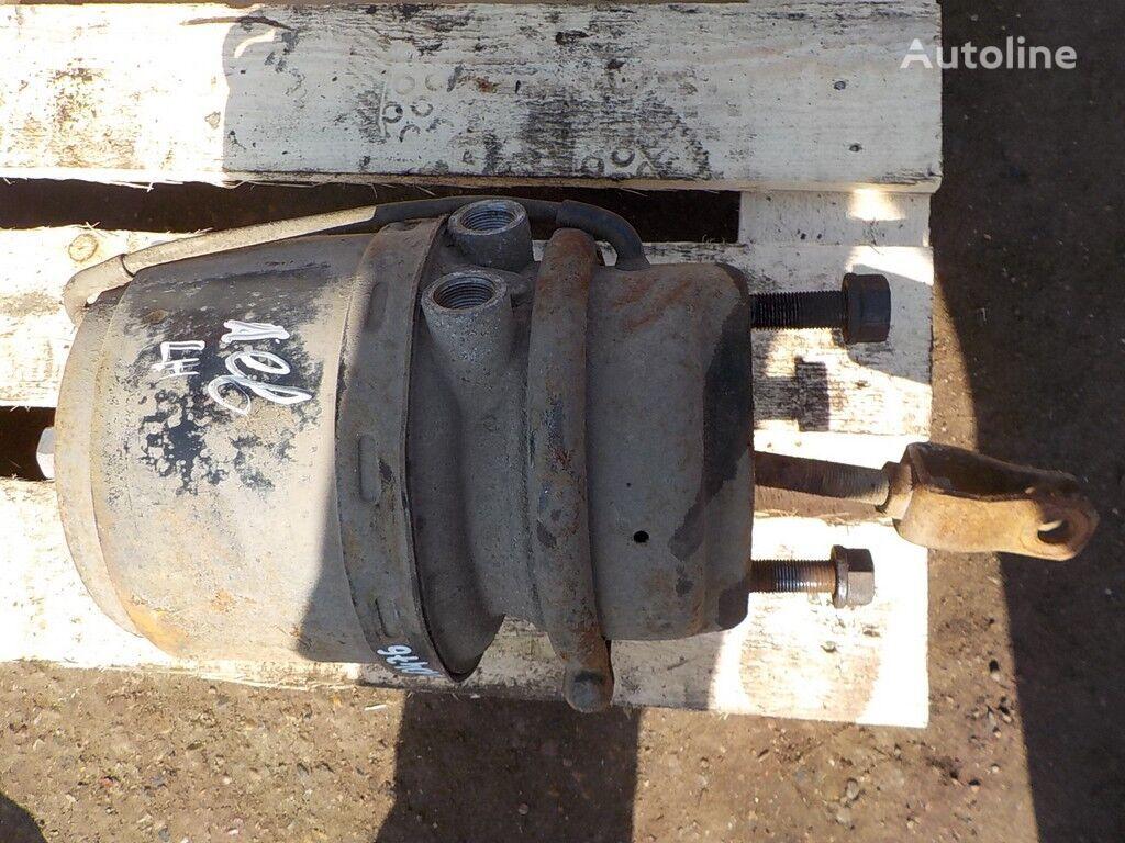 Pruzhinnyy  LH brake accumulator for DAF truck