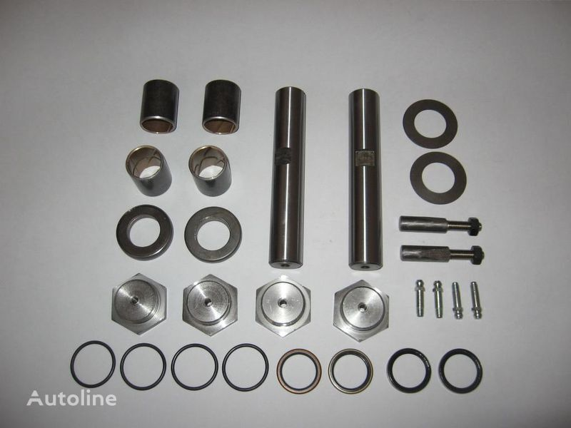 new - KING PIN REPAIR KIT - ZESTAW NAPRAWCZY ZWROTNICY spare parts for NISSAN CABSTAR  truck