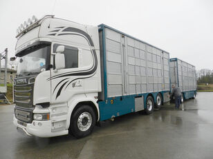 SCANIA R 730 V8 For cattle transport + livestock trailer