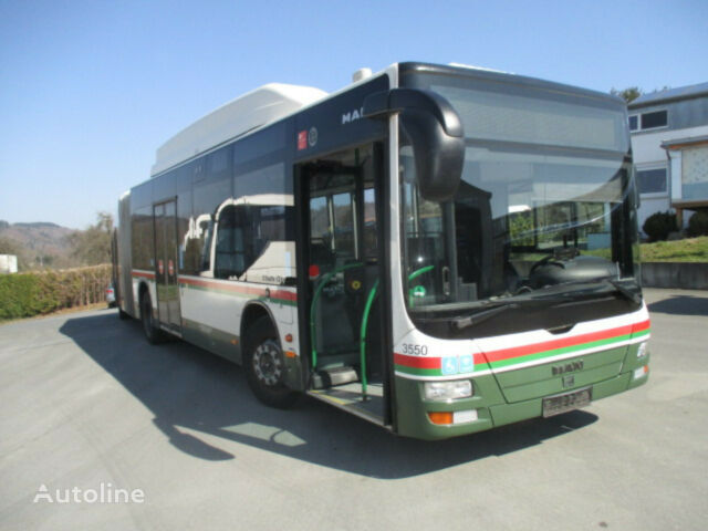 MAN A23 Lion's City CNG articulated bus
