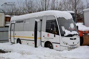 PAZ ВЕКТОР-3 (225602) city bus