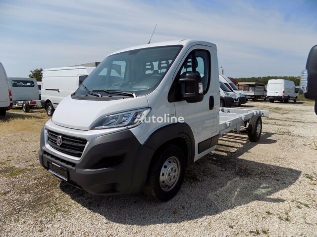 new FIAT Ducato 35 LWB  chassis truck < 3.5t