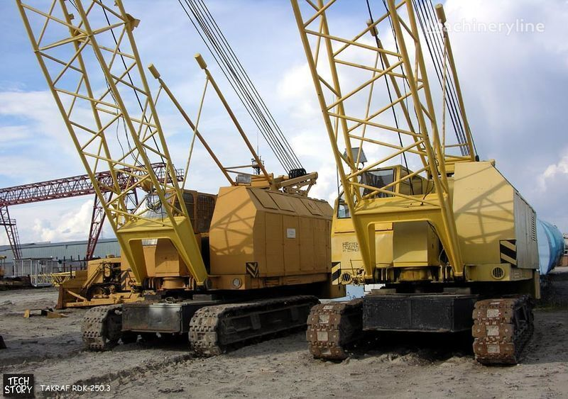 RDK 250 crawler crane