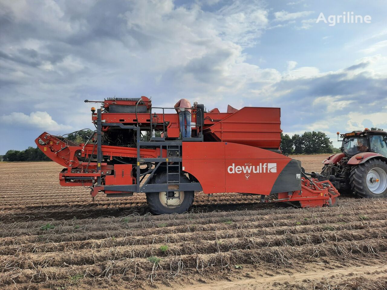 DEWULF R2060 potato harvester