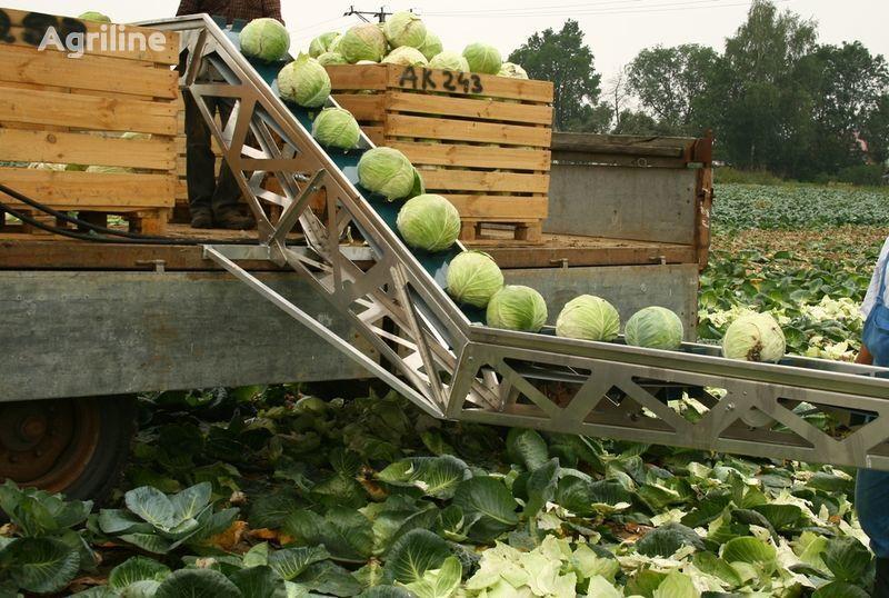 new GRIMME Transporter dlya uborki kapusty potato harvester