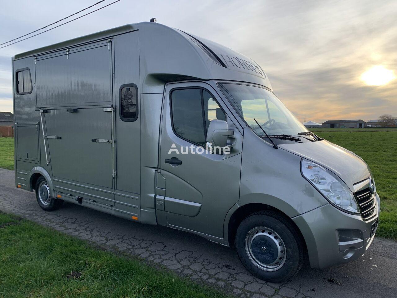 OPEL Movano horse transporter