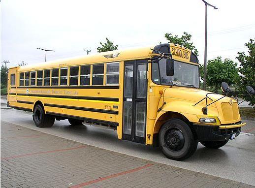 INTERNATIONAL IC 3 s 530 schoolbus school bus