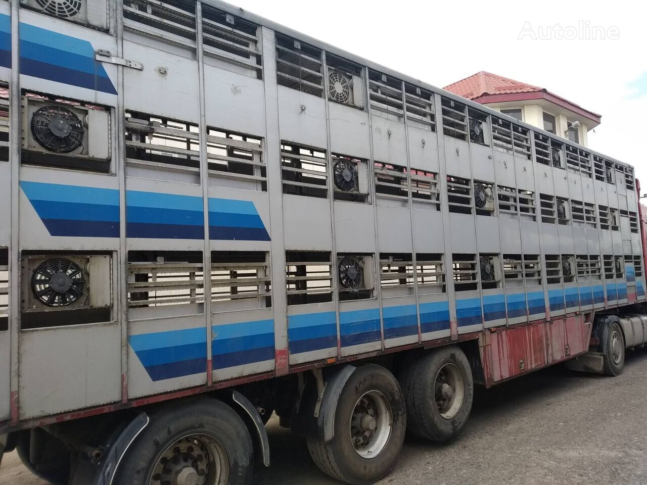 CUPPERS LVO 12 livestock semi-trailer