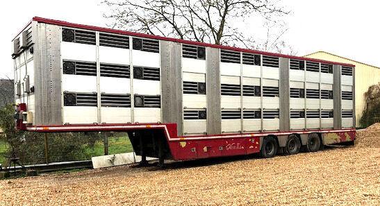 ZORZI I.R.M.A. do bydla - for bovines 2 levels livestock semi-trailer
