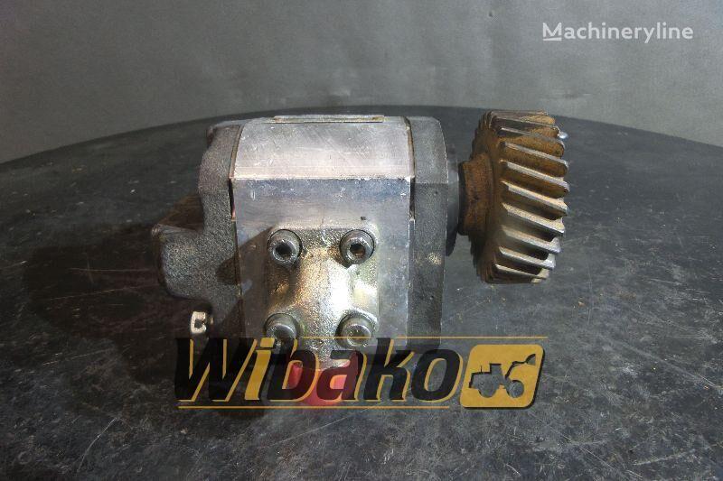 Rexroth 1PF2G240106LC20MPY55 gear pump for excavator
