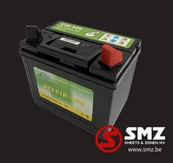 Diversen Batterij 12V 24AH (c20) 250A (EN) other electrics spare part