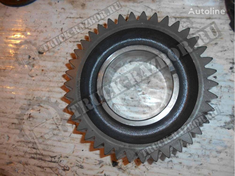 shesternya 2-y peredachi DAF spare parts for DAF tractor unit