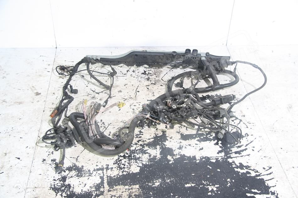 MAN (81254246352) wiring for truck