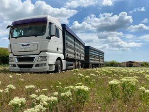 MAN TGA 26.440 grain truck + grain trailer