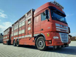 DAF XF 105.510 6x4 Élőállat-szállító livestock truck + livestock trailer