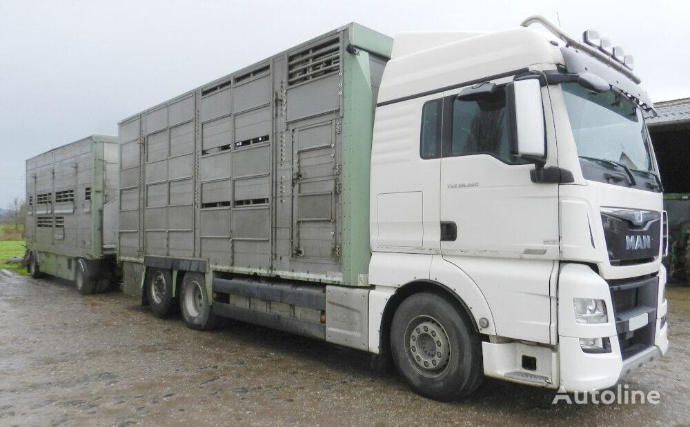 MAN TGX 26.520   livestock truck + livestock trailer