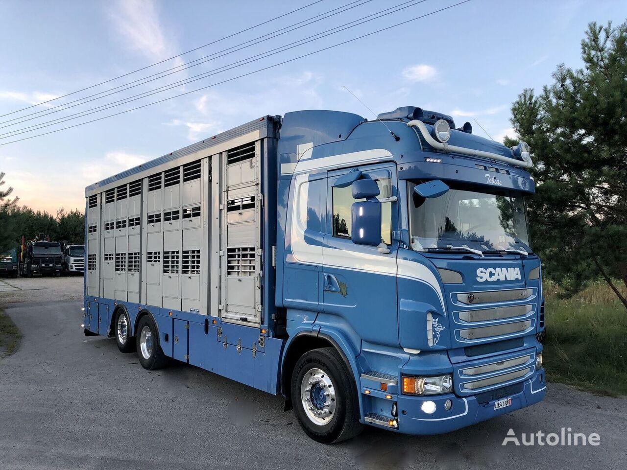 SCANIA R 560  livestock truck
