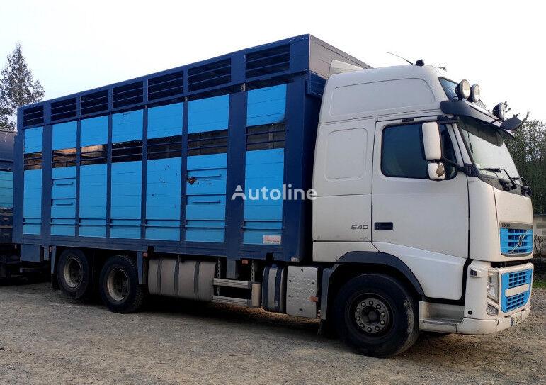 VOLVO FH 540 For bovines - Do bydla livestock truck